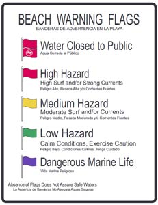 Beach Warning Flags Poster