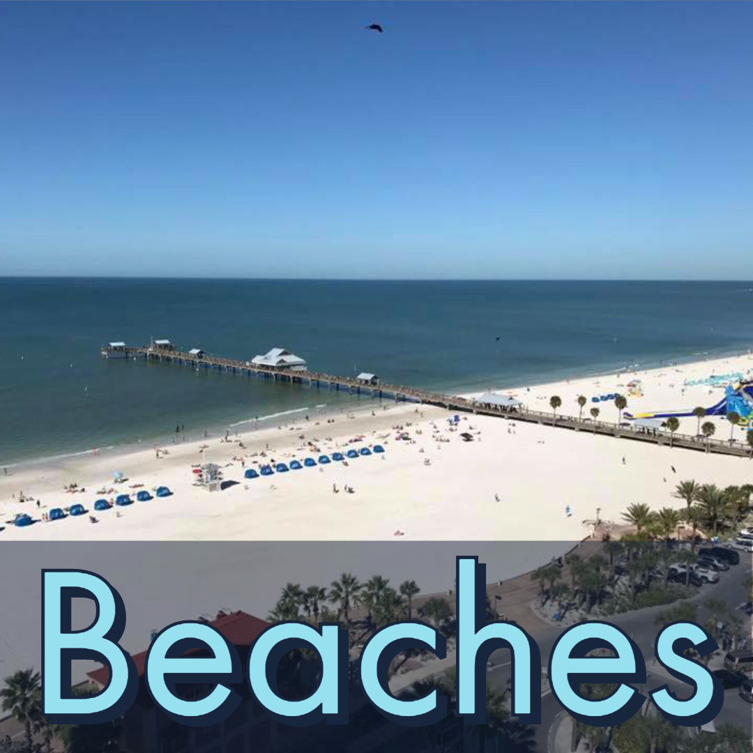 Link to Clearwater Beaches